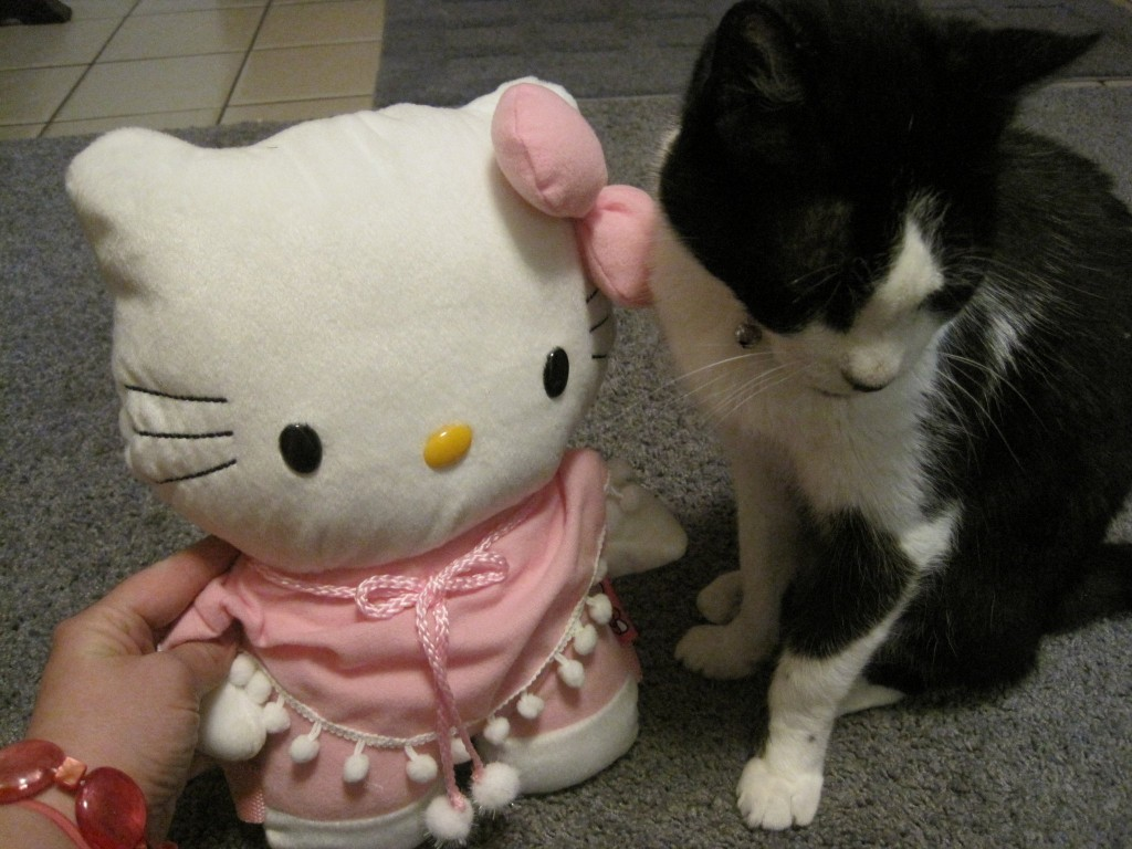 Moe & Hello Kitty