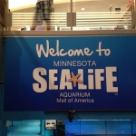 Wordless Wednesday: Sea Life Minnesota Aquarium! @SeaLifeMN