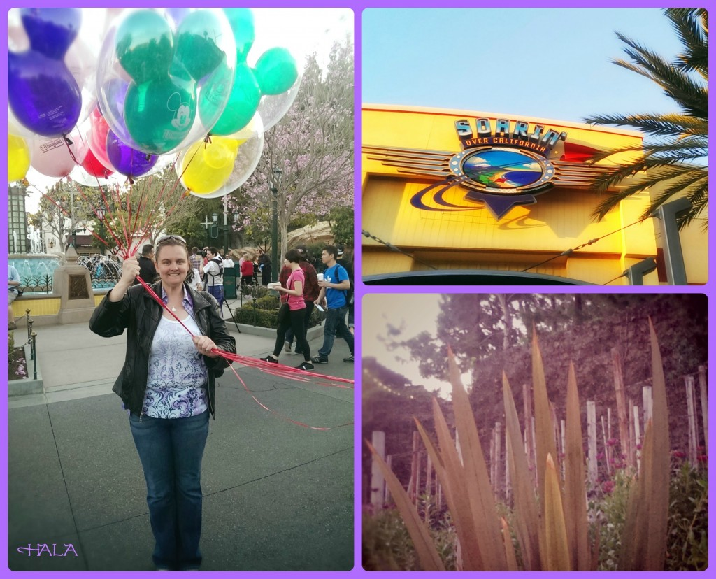 Disney's California Adventure Balloons