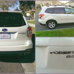 Horsing Around In the 2014 Subaru Forester #SubaruForester