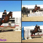 Jumping Around at the Barn