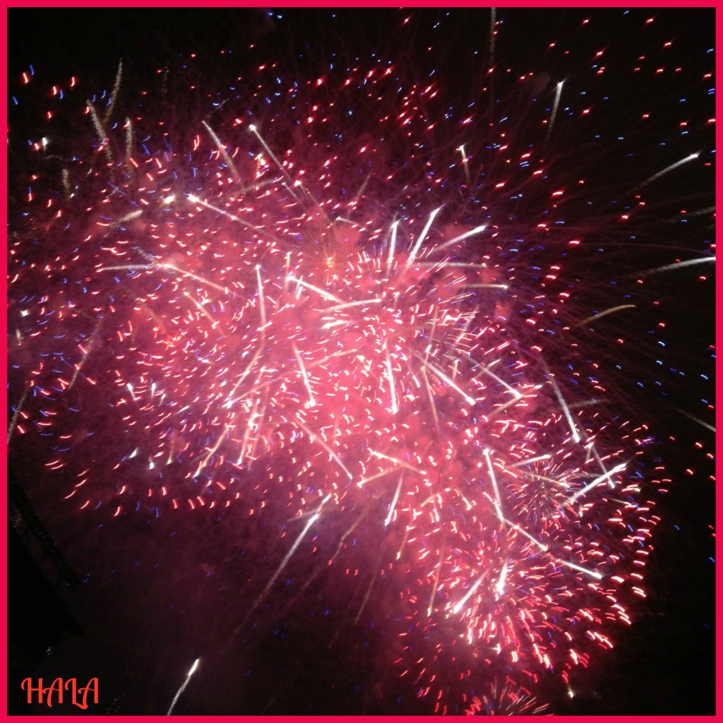 Fireworks 2013 red