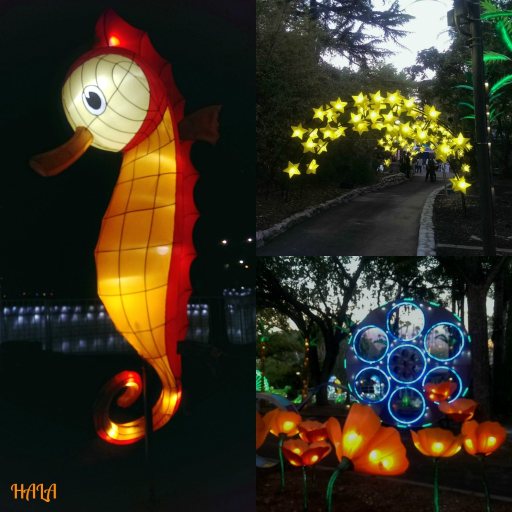 LACF Luminasia Night
