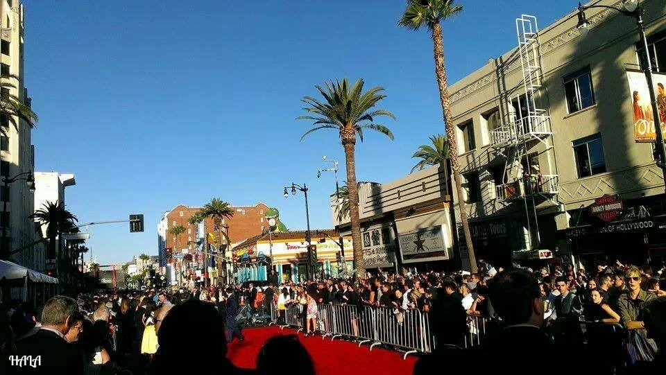 Red Carpet Hollywood Premiere