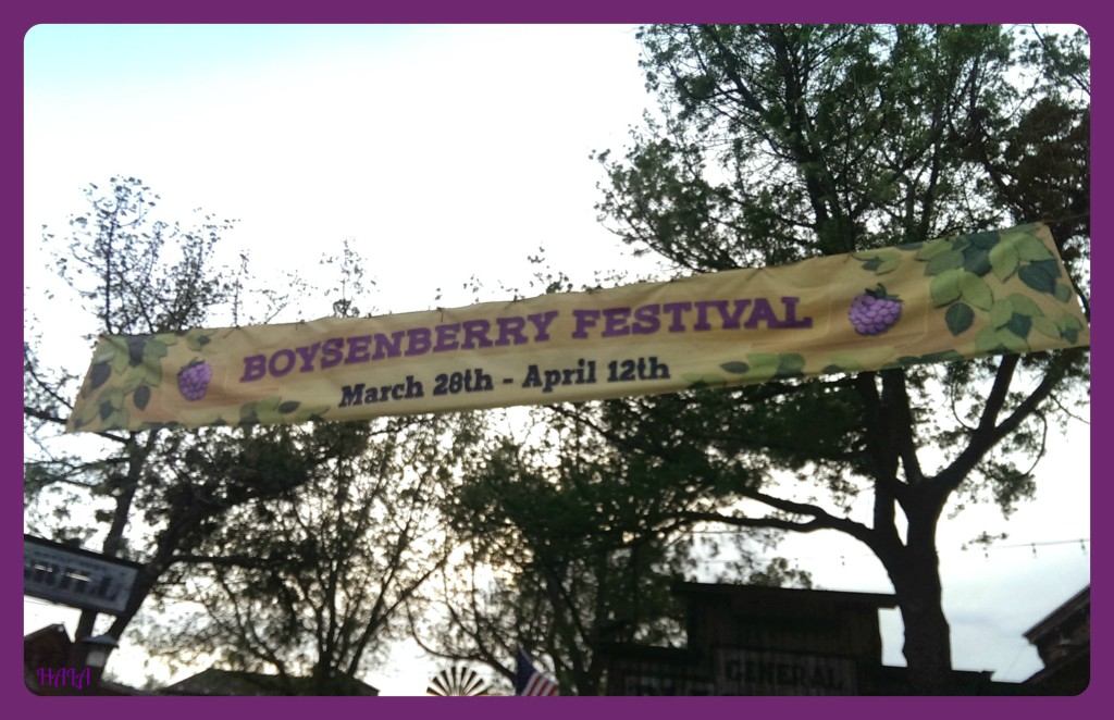 Knotts-Boysenberry-Festival-Banner