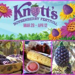 Knott's Berry Farm's Boysenberry Festival & Giveaway #KnottsSpring @Knotts