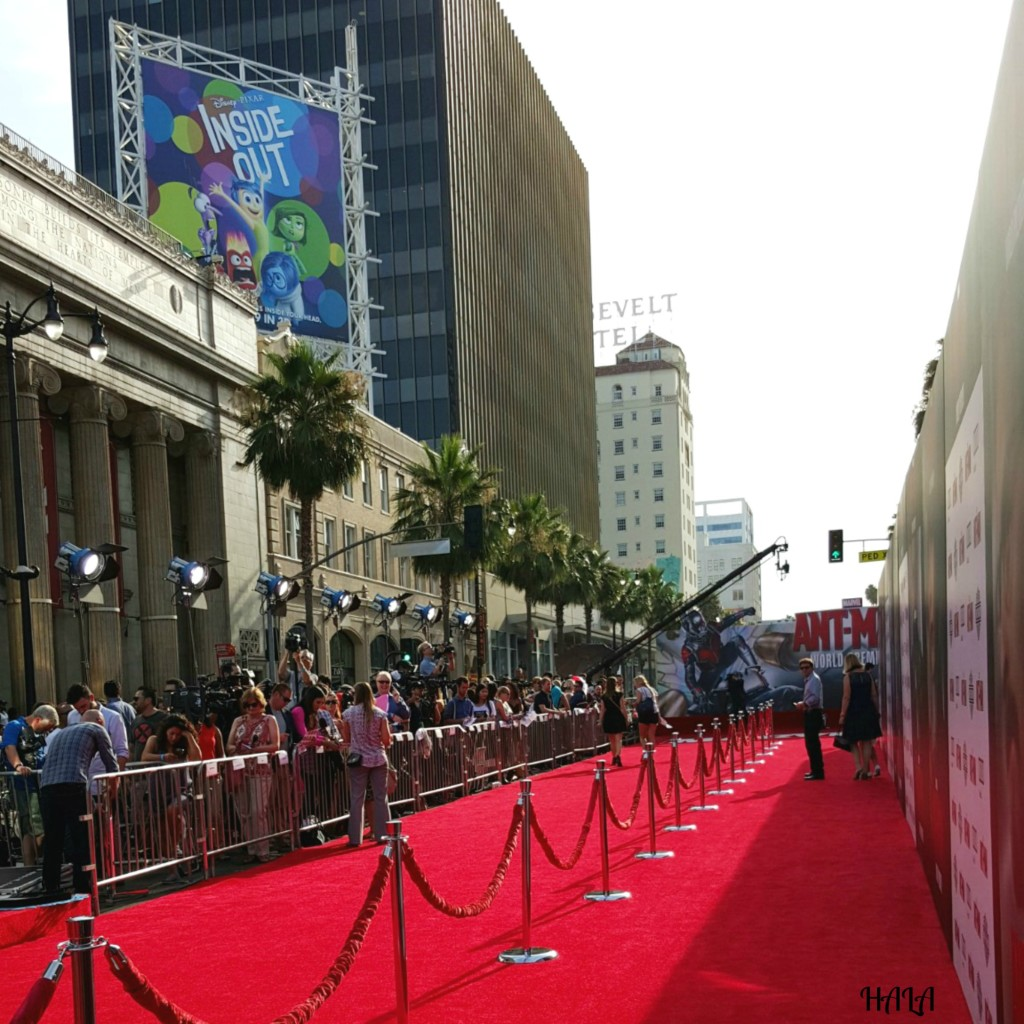 Red-Carpet-Ant-Man