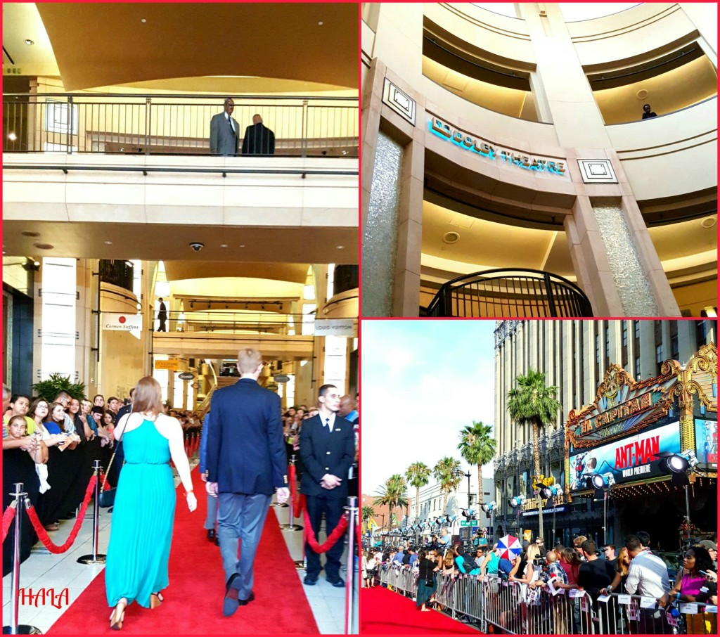 Red-Carpet-Walk