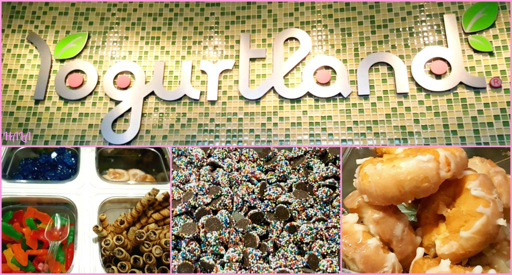 Yogurtland-Sweet-Treat-Toppings