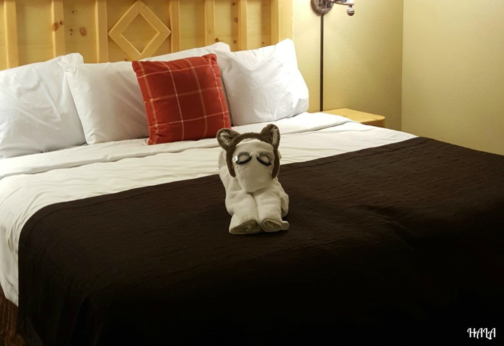 Great-Wolf-Lodge-Resort-Room-Animals