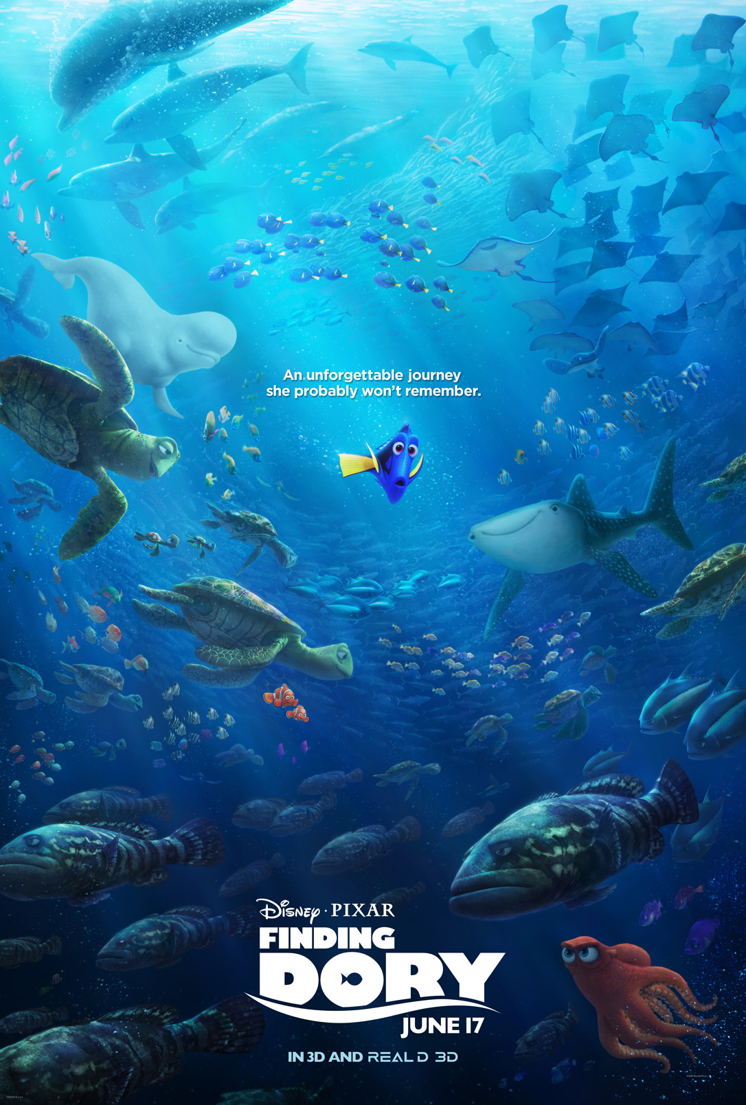 findingdory56e083961b31d-1