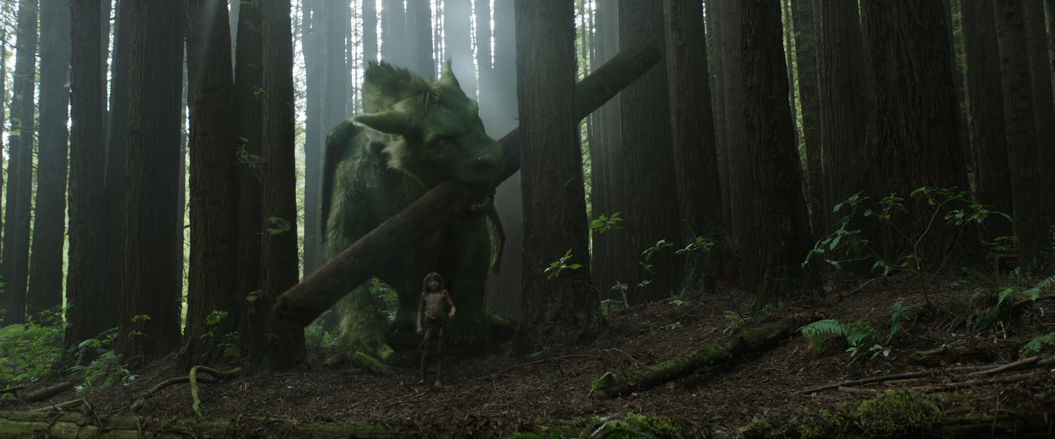 A re-imagining of Disney's cherished film, PETE'S DRAGON is the story of a boy named Pete (Oakes Fegley) and his best friend Elliot, who just happens to be a dragon.