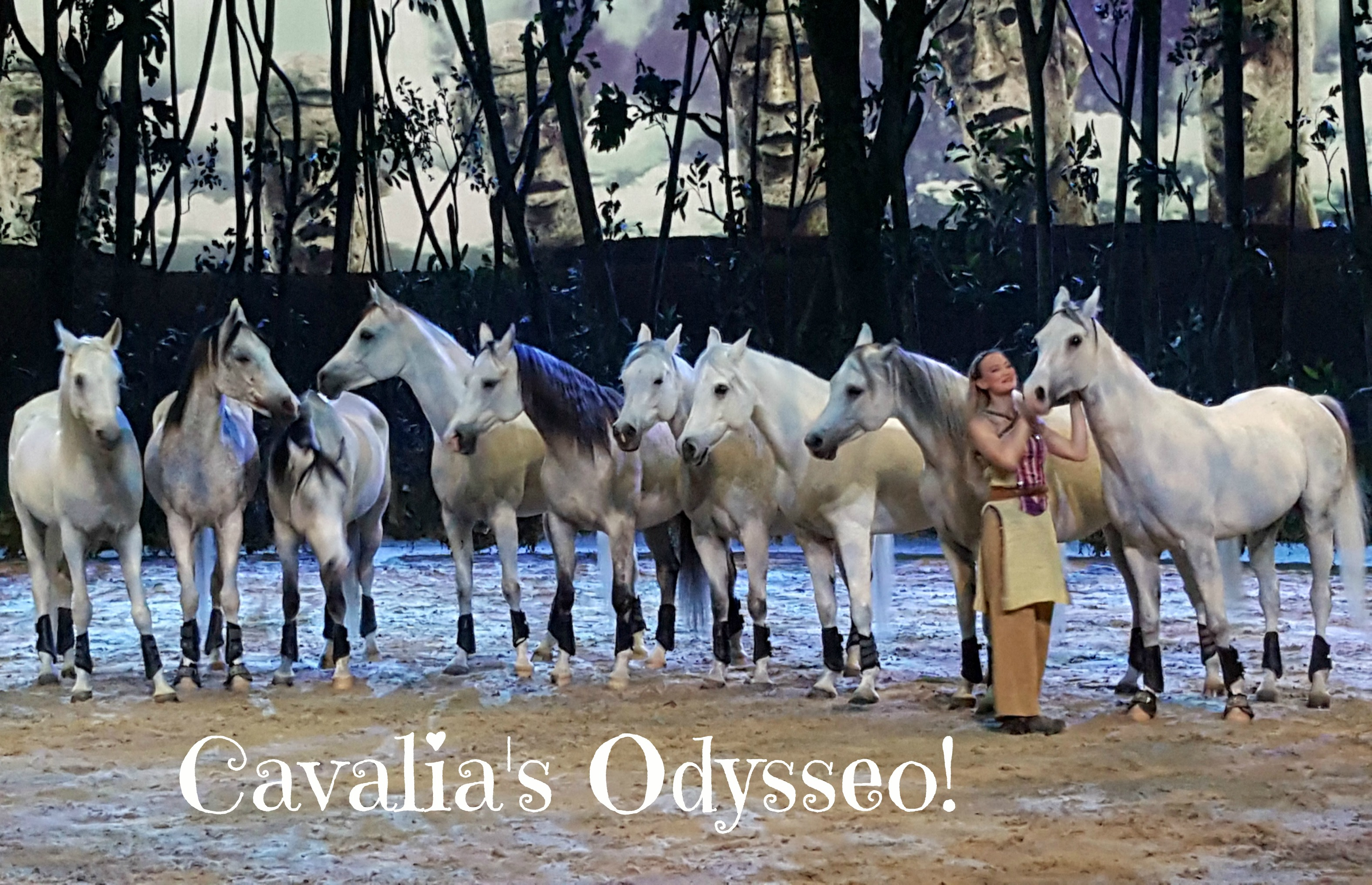 cavalias-odysseo-orange-county-irvine