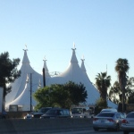 Cavalia's Odysseo: Galloping into our Hearts!
